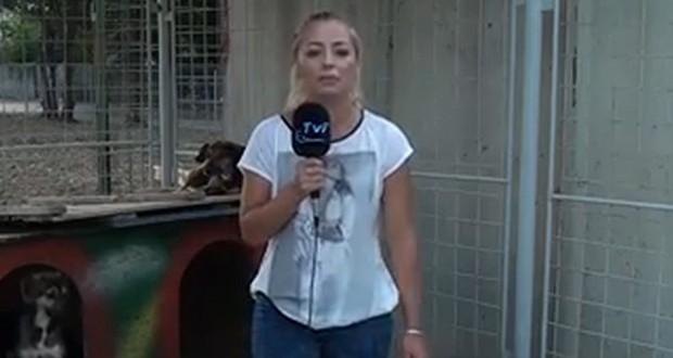 """Moment penibil pentru o reportera din Romania! Ce a patit in timp ce prezenta o stire: """"S-a p***t pe mine! Bai, nene!"""""""