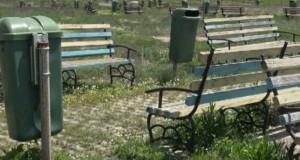 Descoperire macabră într-un parc din Timişoara