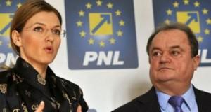 Dan Vasile Mihale: Moțiunea PNL, o nouă cârje pentru premierul inculpat Victor Viorel Ponta