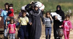 Primii refugiați au ajuns în România. Ce au descoperit polițiștii când i-au luat la întrebări