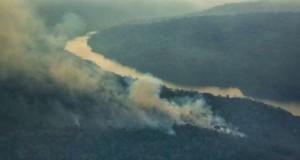 Incendiu de proporții în Brazilia! Focul a pârjolit suprafețe mari de pădure