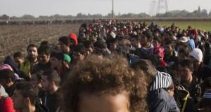 Austria, decizie de ultima oră pentru a controla fluxul de imigranţi: barieră la graniţa cu Slovenia
