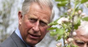 Prințul Charles, extrem de șocat de tragedia din Colectiv. Ce mesaj a transmis victimelor tragediei