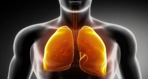 Descoperire fenomenală despre plămâni! Mai au o funcţie importantă, despre care nu se ştia