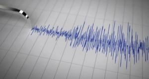 Cutremur, duminică, în judeţul Vrancea
