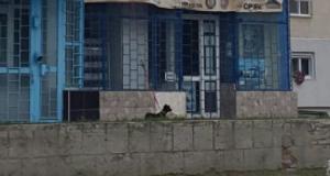 Uluitor! Cum a ales un cetățean din Slobozia să-și plimbe cățelul