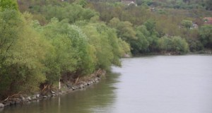 Caz șocant: corpul unui bărbat a fost scos din Râul Mureș în stare avansată de descompunere