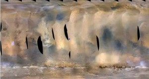 O furtună masivă a lovit un sfert din Planeta Marte. Robotul NASA, îngropat. Imagini din altă lume