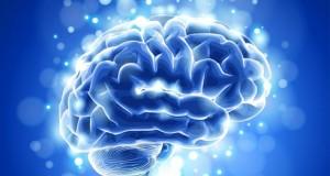 Curiozităţi despre creier pe care nu le ştiai. Este UIMITOR