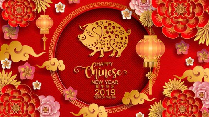 HOROSCOP CHINEZESC 2019 / Mistretul de Pamant