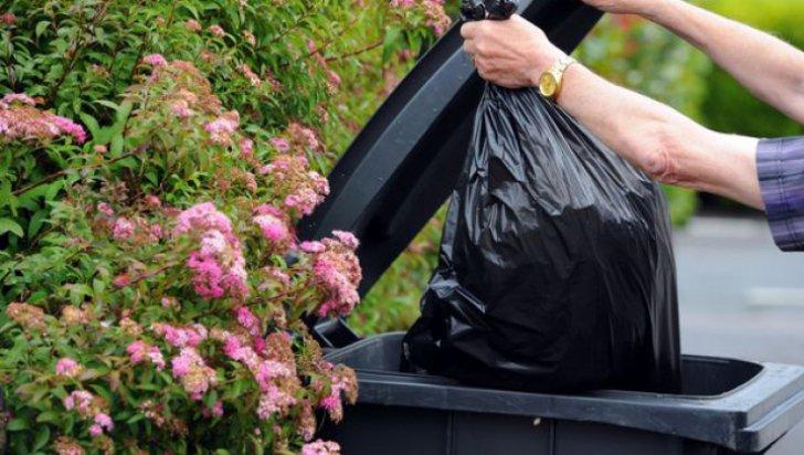 De ce nu este bine să duci gunoiul seara? Este mai rau decât credeai
