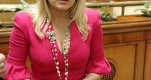Udrea, despre dosarul Gala Bute: Niciun copil de grădiniţă nu crede ce spun Topoliceanu şi Lungu