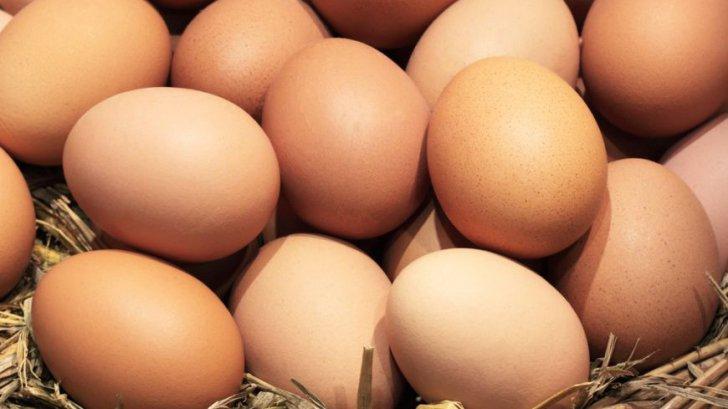 Cum verifici dacă un ou este proaspăt. TRUCURI inteligente
